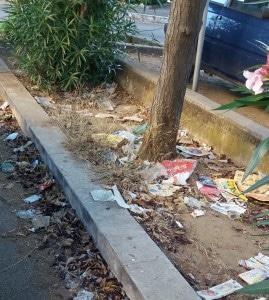 Nessuno raccoglie i rifiuti in via Calcare a Santa Barbara